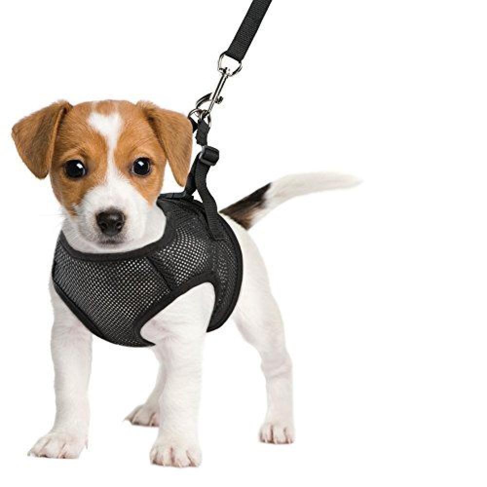Шлейка-жилетка для собак